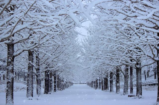 冬の体感温度は危険レベル!防寒対策は必須