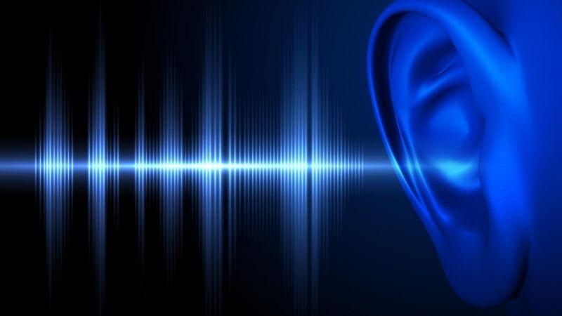 3つ目の条件は聴力!どのくらい聞こえる必要があるの?